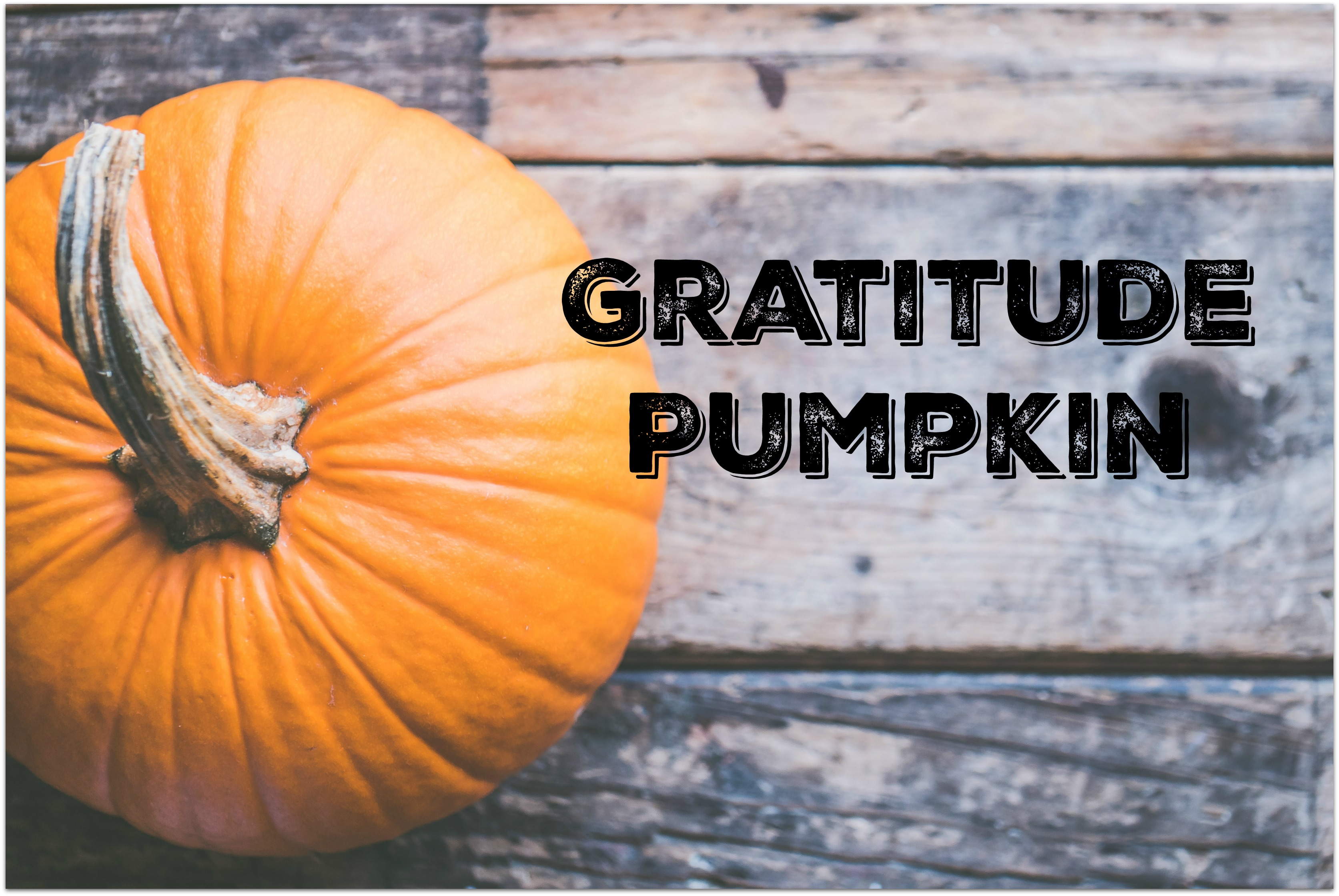 Pumpkin - 5 Ways to Keep Your Family Focused on Gratitude this Holiday
