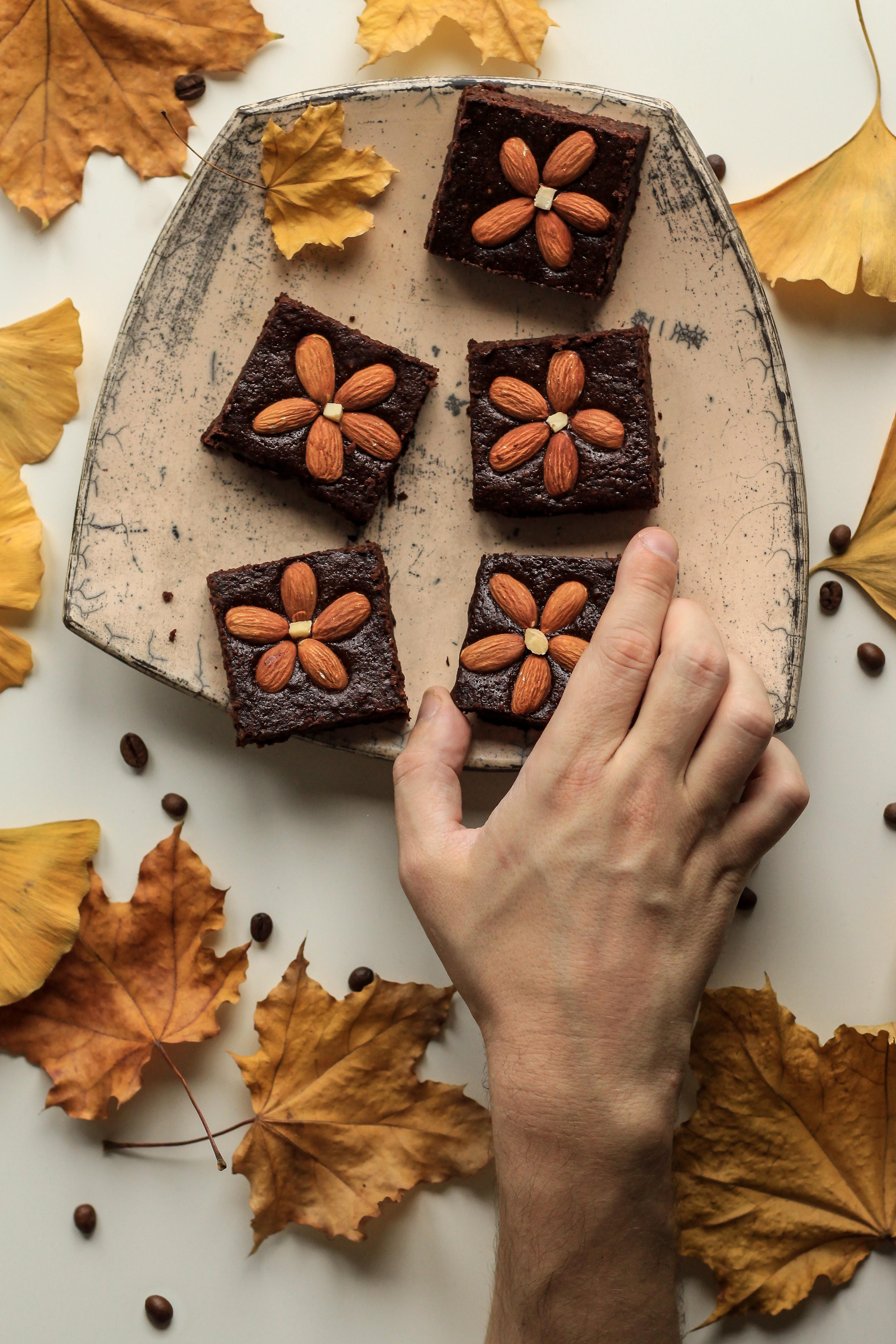 Dessert Bars - Thanksgiving
