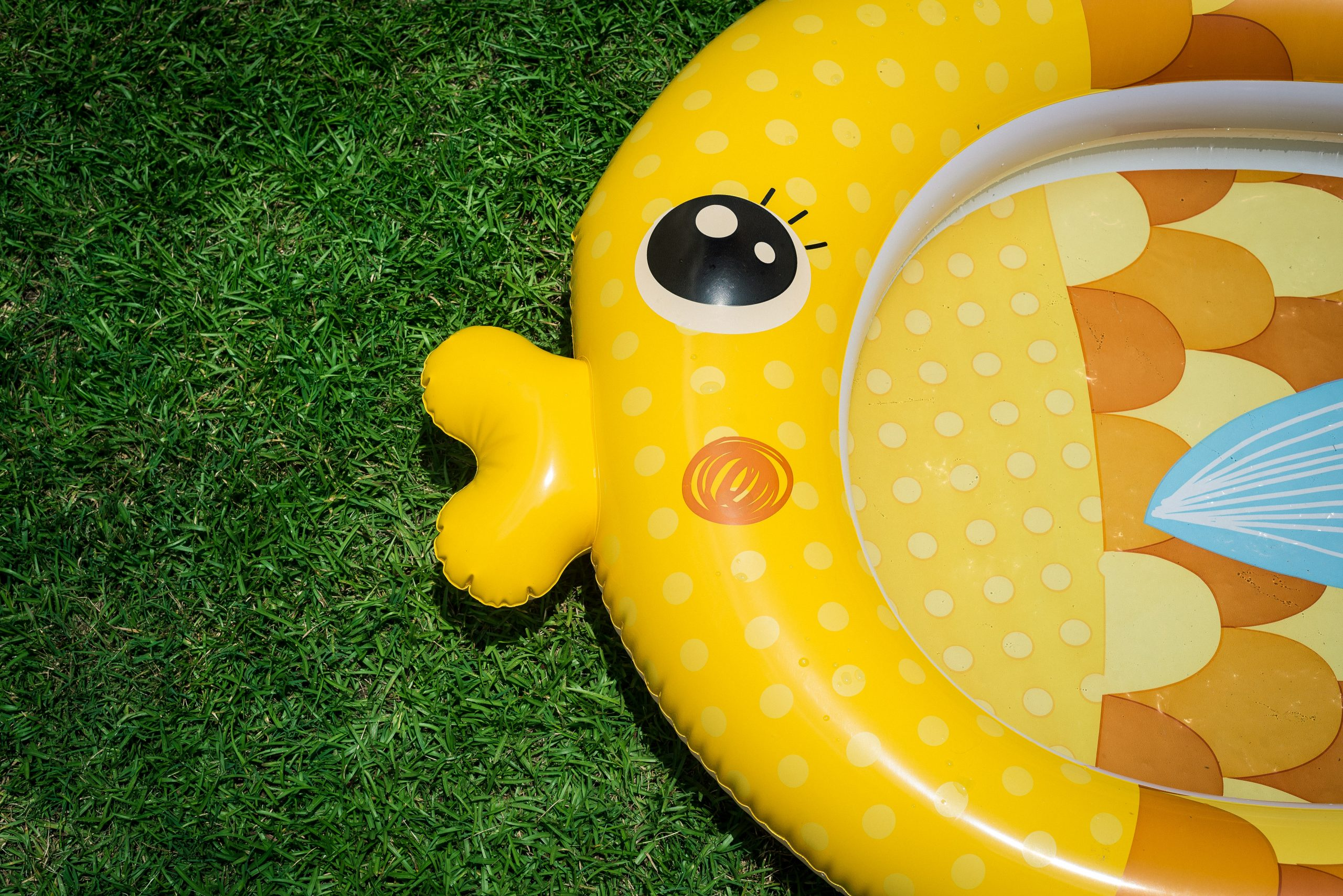 Baby Pool - Best Outdoor Toys for 3 and 4 year olds